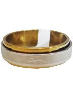 Anel de Aço Giratório Prata com Dourado com Desenho Lagartixa